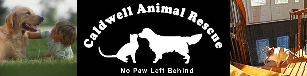 Caldwell Animal Rescue header